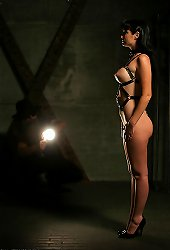 Hot brunette dominated in dark wizard\